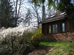 Mill House in the Spring with Cherry Blossoms